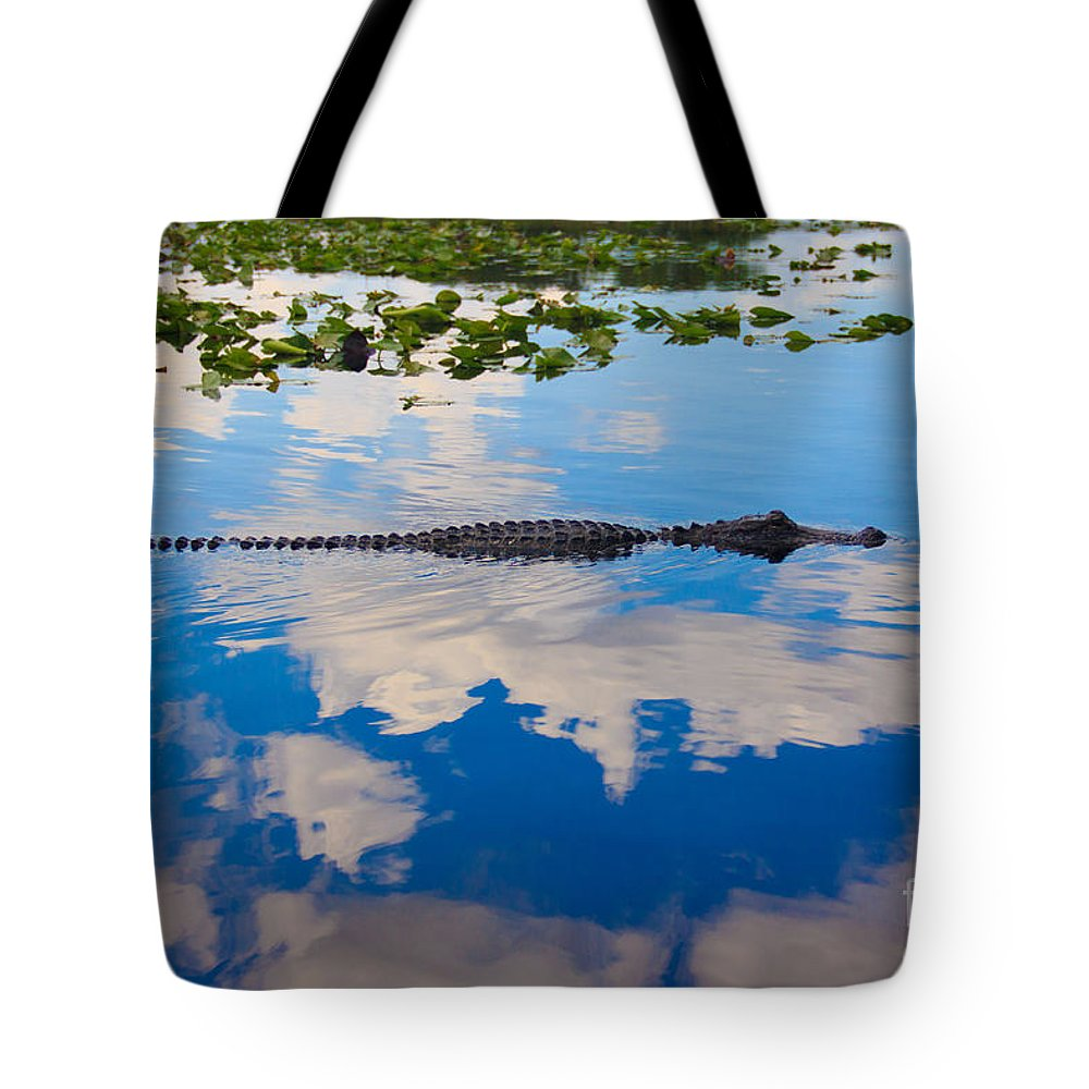 Alligator Tote Bag featuring the photograph American Alligator Swimming Through The Clouds by Lucy Raos