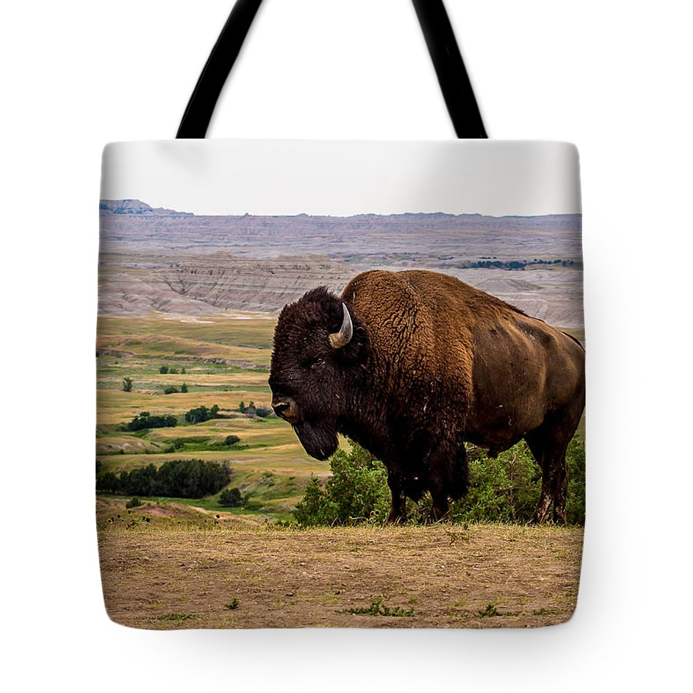 American Bison Tote Bag featuring the photograph American Bison by Bill Lindsay