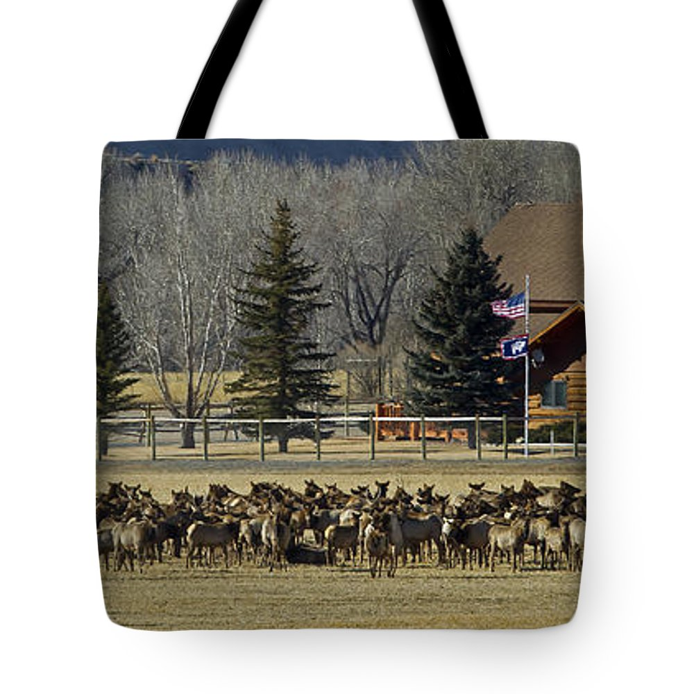 Elk Tote Bag featuring the photograph American Elk  #4305 by J L Woody Wooden