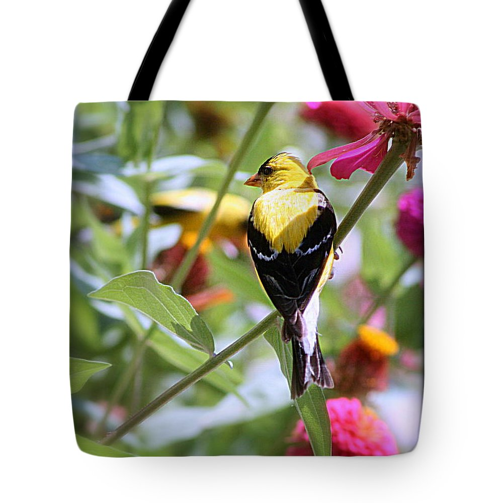American Tote Bag featuring the photograph American Goldfinch by Kay Novy