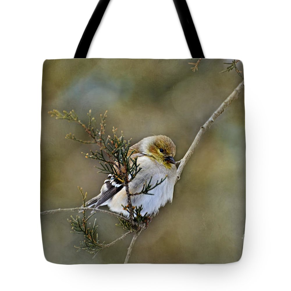 Branch Tote Bag featuring the photograph American Goldfinch On A Cedar Twig by Debbie Portwood