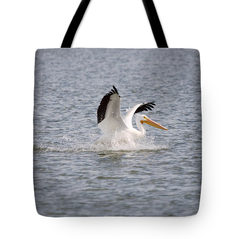 Roy Williams Tote Bag featuring the photograph American White Pelican Landing 3 by Roy Williams