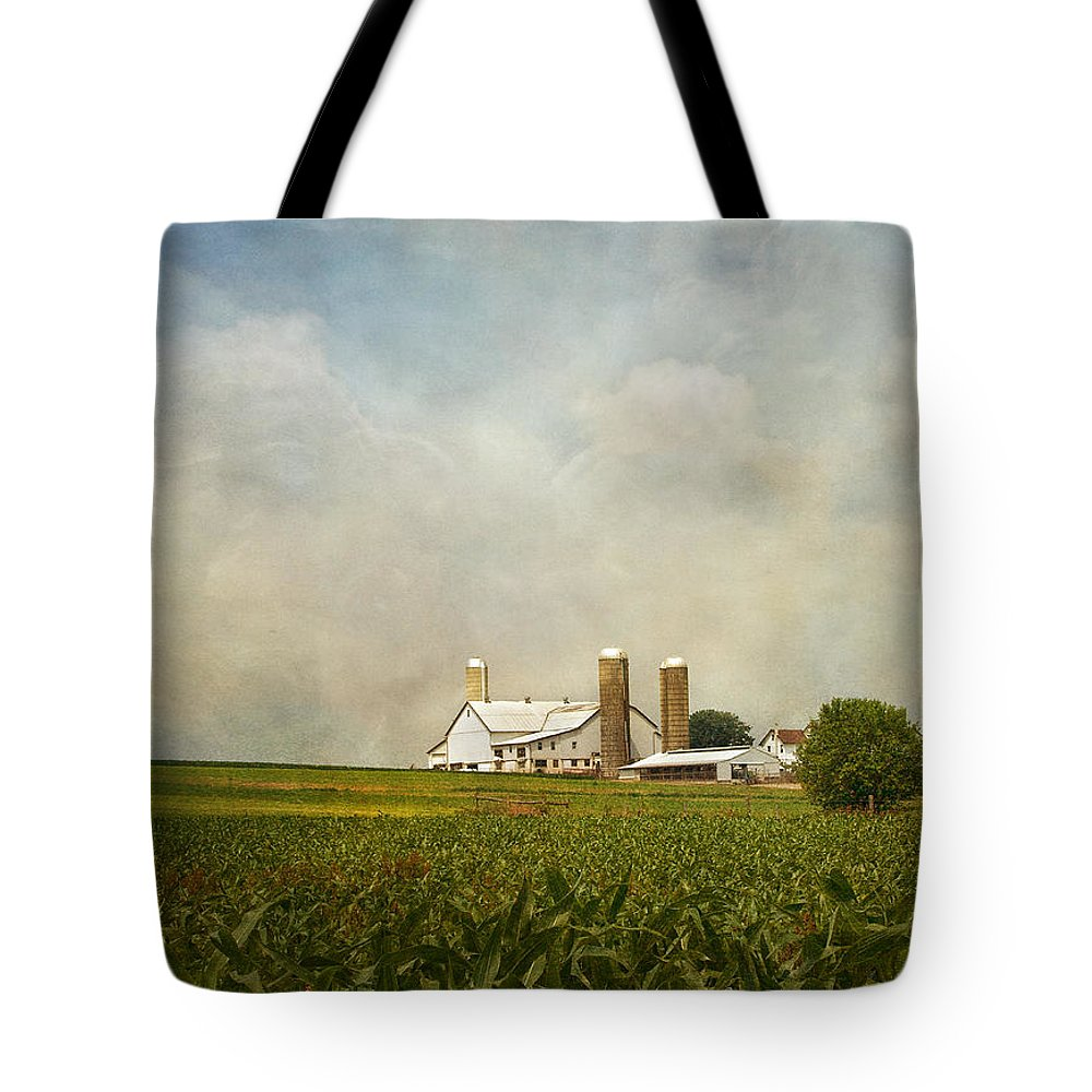 Rural Tote Bag featuring the photograph Amish Farmland by Kim Hojnacki