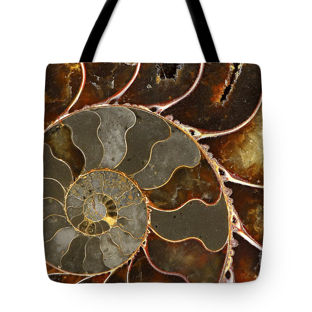 Shell Tote Bag featuring the photograph Ammolite by Elena Elisseeva