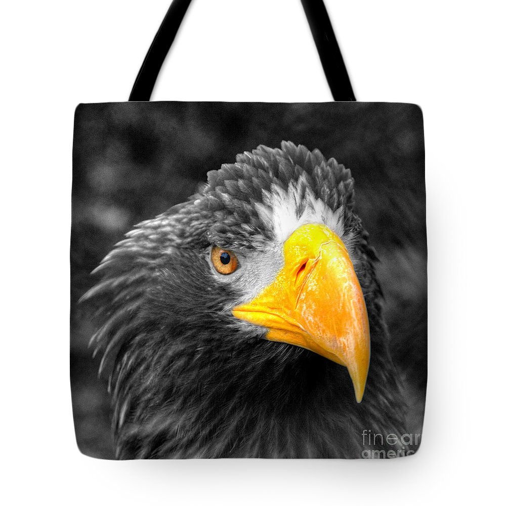 Golden Tote Bag featuring the photograph An American Eagle by Rob Hawkins