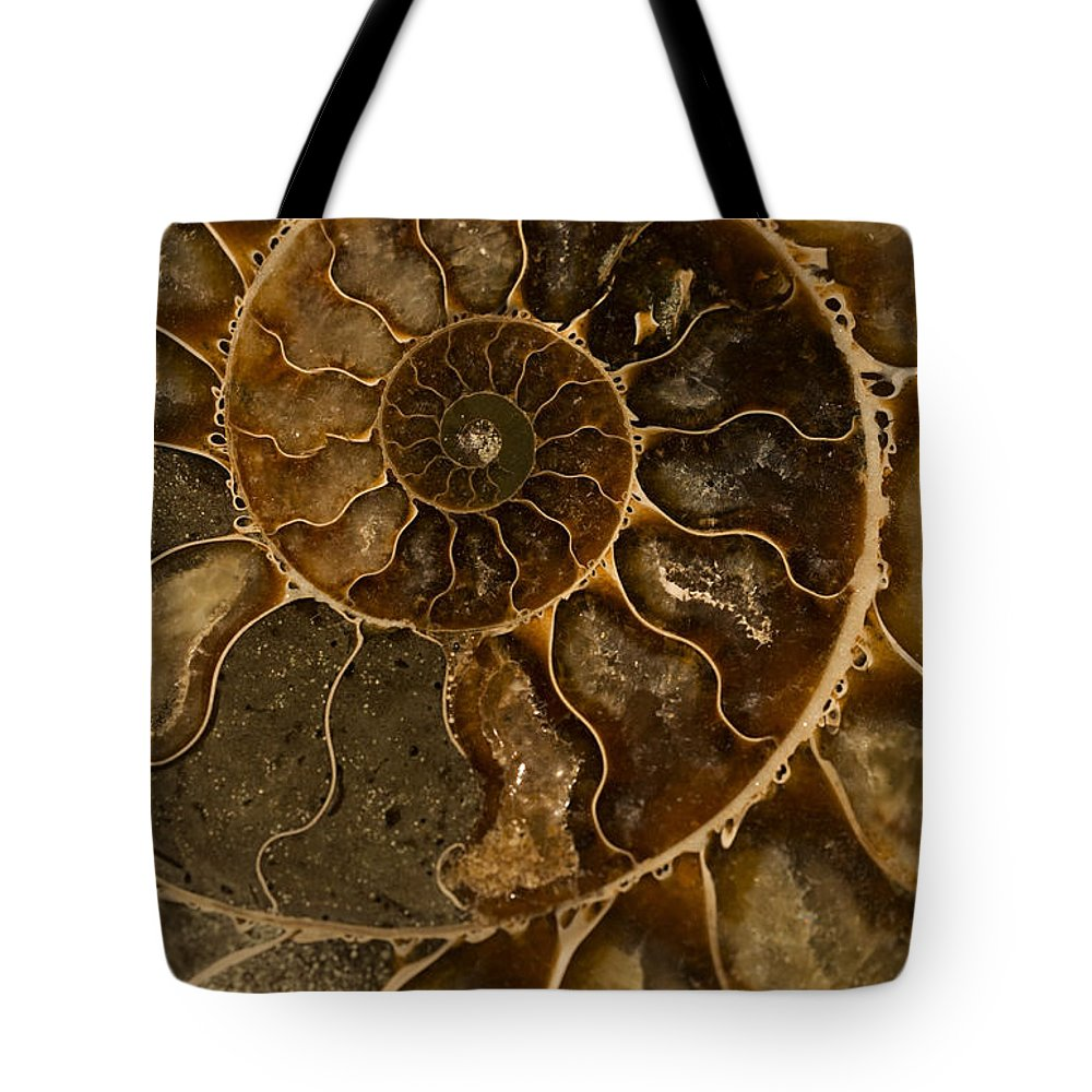 Ammonite Tote Bag featuring the photograph An Ancient Ammonite Pattern II by Jaroslaw Blaminsky