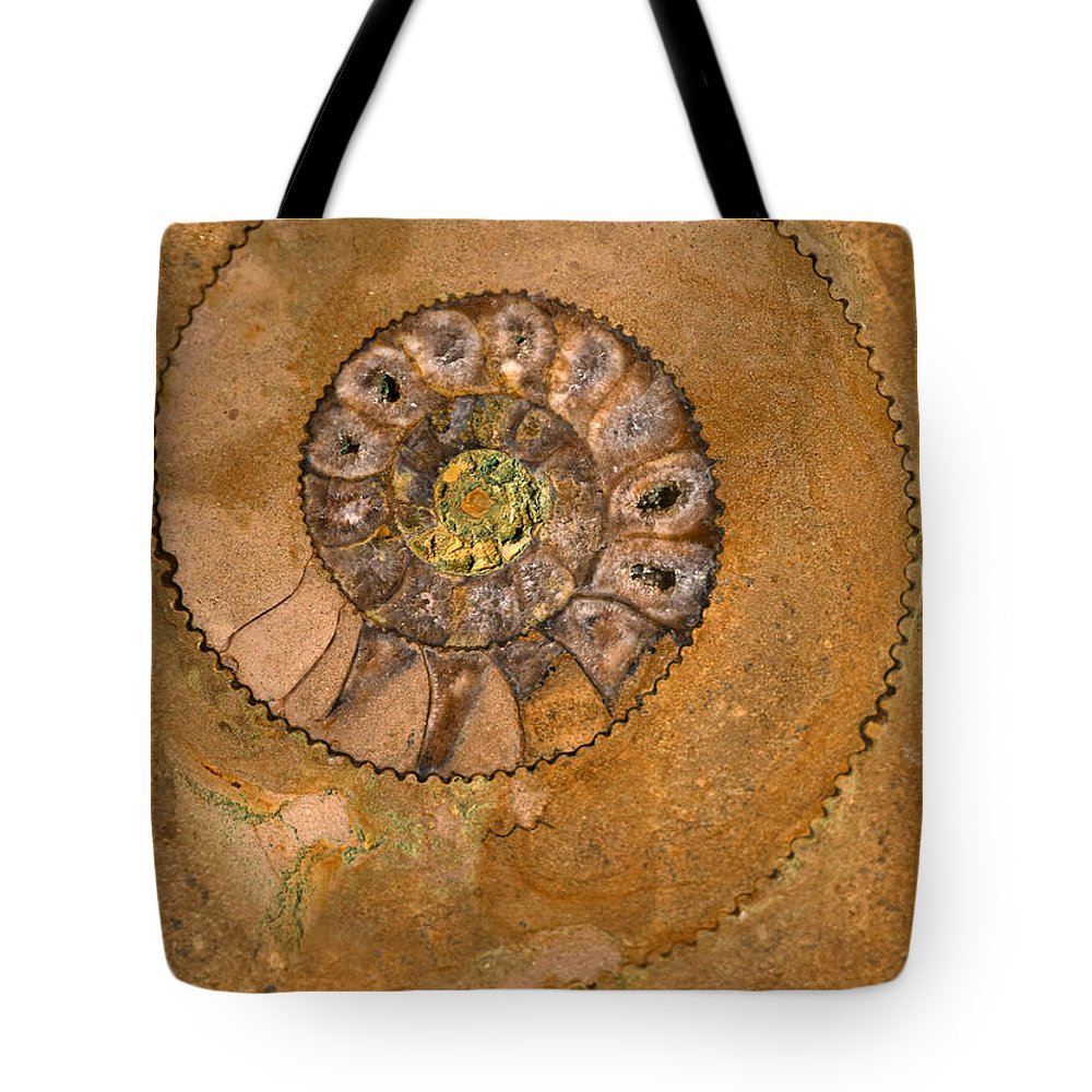 Ammonite Tote Bag featuring the photograph An Ancient Treasure I by Jaroslaw Blaminsky