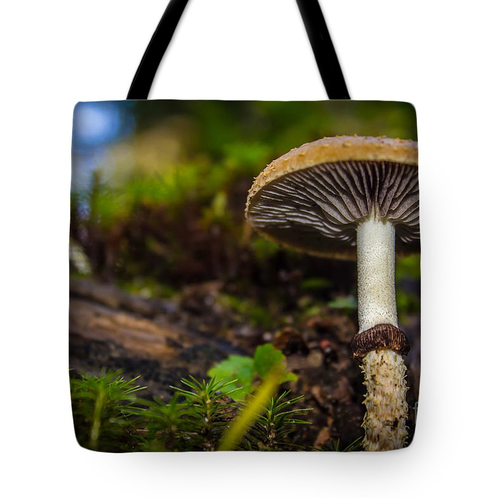 Mushroom Tote Bag featuring the photograph An Ant's View by Mary Giordano