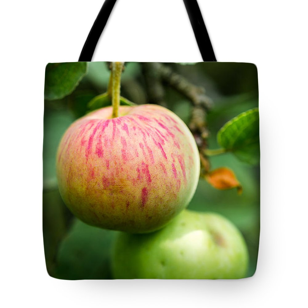 Abstract Tote Bag featuring the photograph An Apple - Featured 3 by Alexander Senin