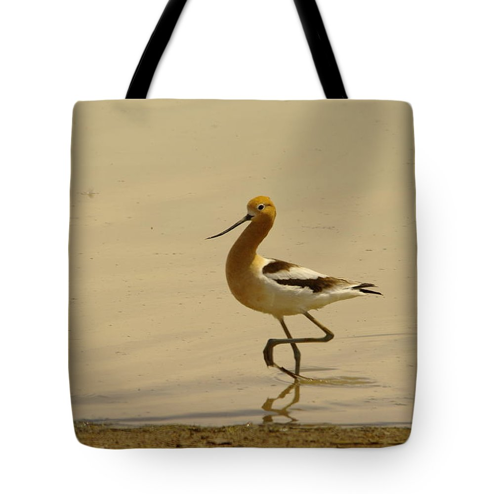Birds Tote Bag featuring the photograph An Avocet Wading The Shore by Jeff Swan