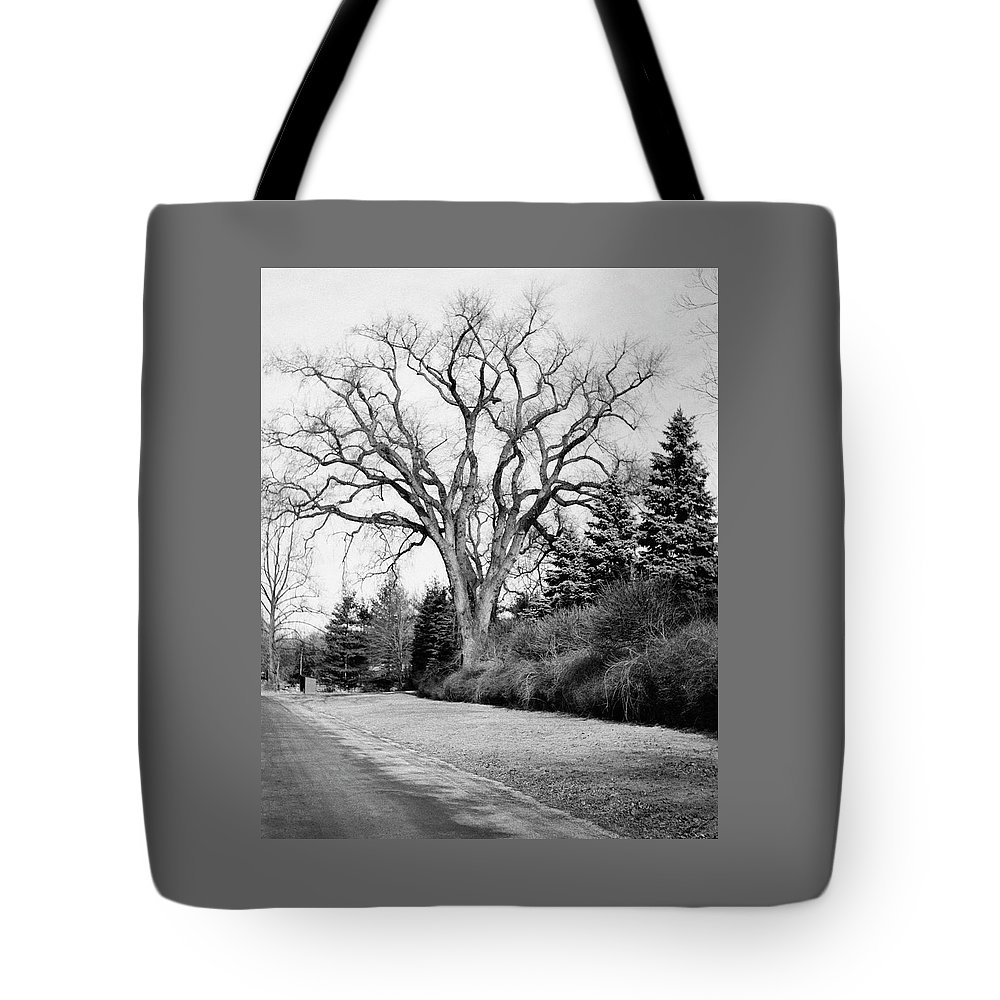 Exterior Tote Bag featuring the photograph An Elm Tree At The Side Of A Road by Tom Leonard
