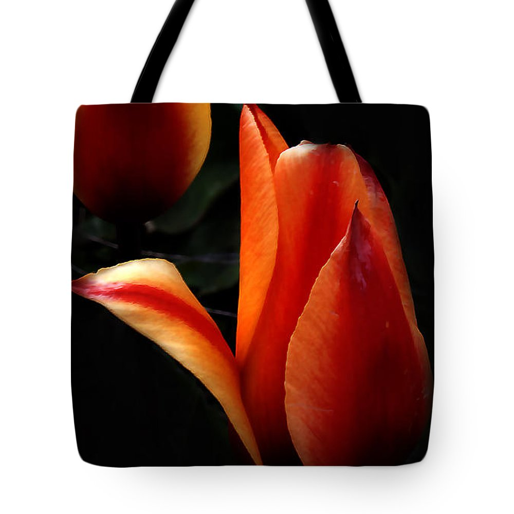 Fire Tote Bag featuring the photograph an Invitation... by Milena Ilieva