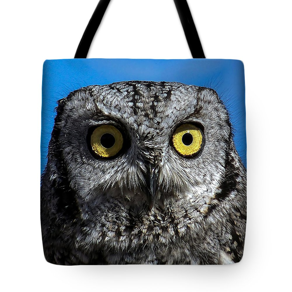 Owl Tote Bag featuring the photograph An Owl by Ernie Echols