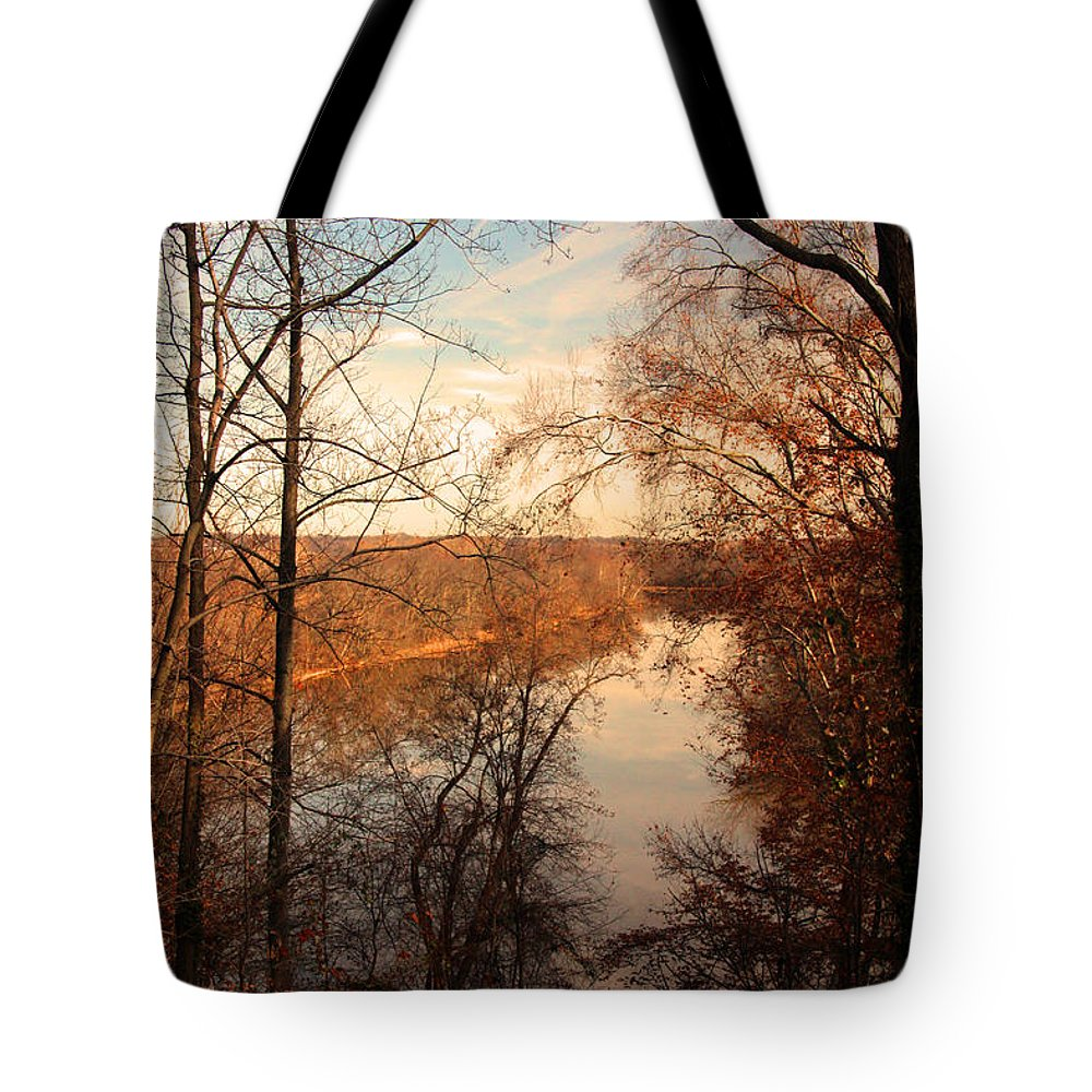 Arboretum Tote Bag featuring the photograph Anacostia River 6457 by Carolyn Stagger Cokley