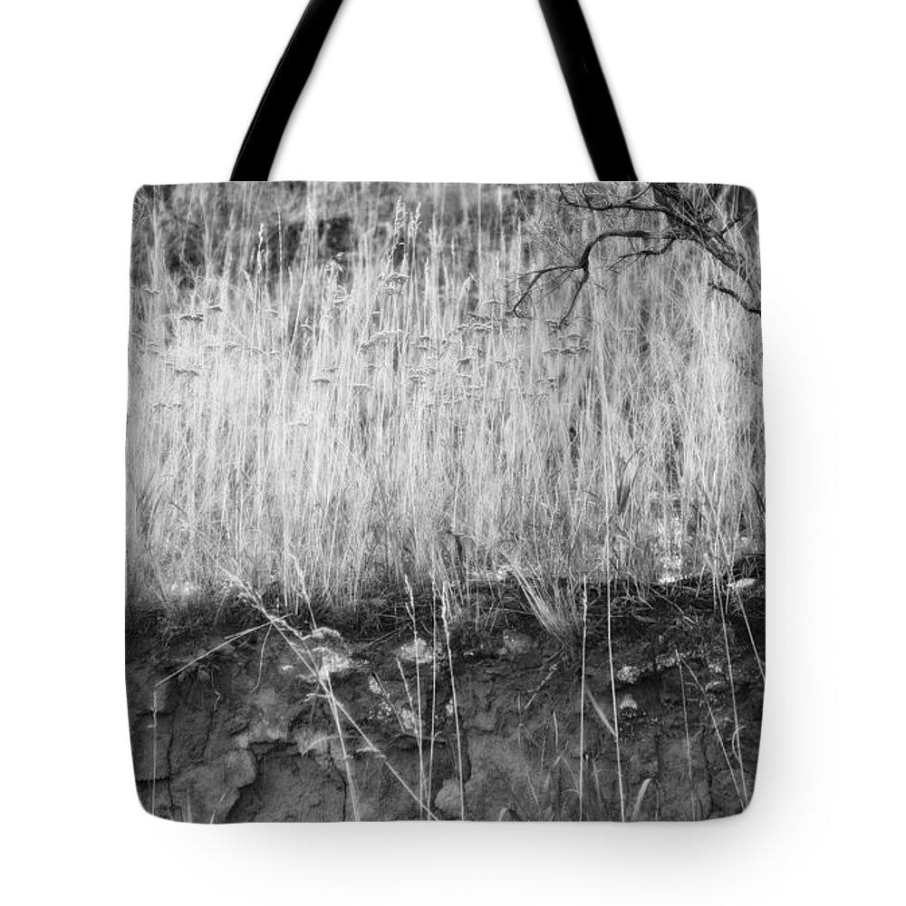 Sagebrush Tote Bag featuring the photograph Ancient Sagebrush 2 by Theresa Tahara
