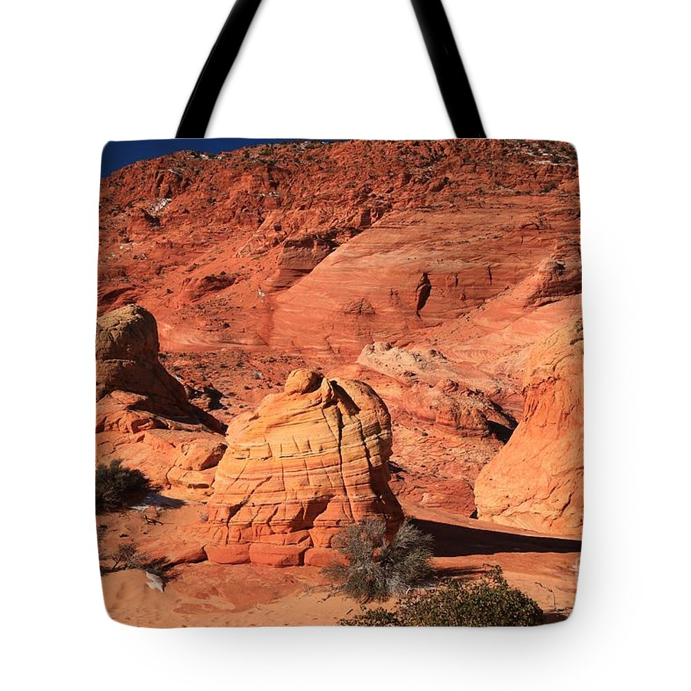 The Wave Tote Bag featuring the photograph Ancient Sand Dunes by Adam Jewell