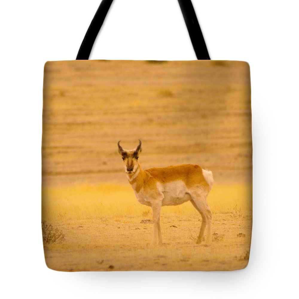 Tote Bag featuring the photograph And Just Who Are You by Jeff Swan