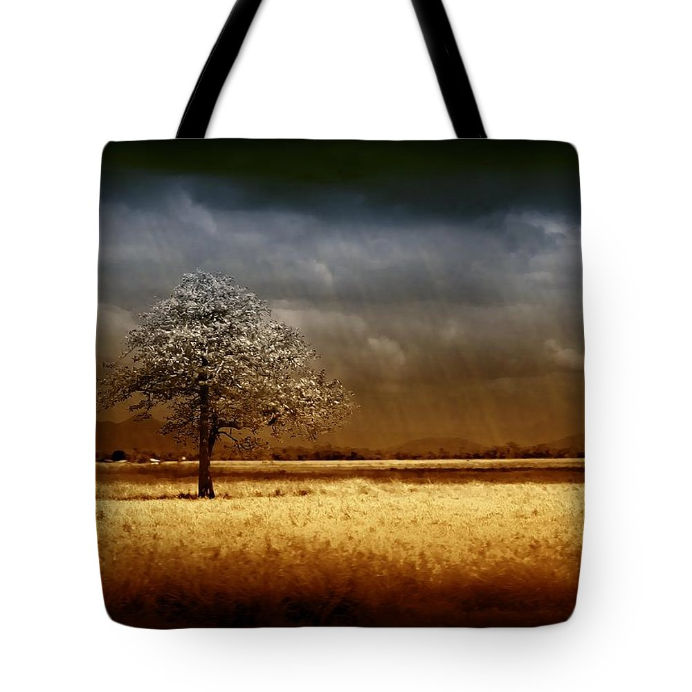 Landscapes Tote Bag featuring the photograph And The Rains Came by Holly Kempe