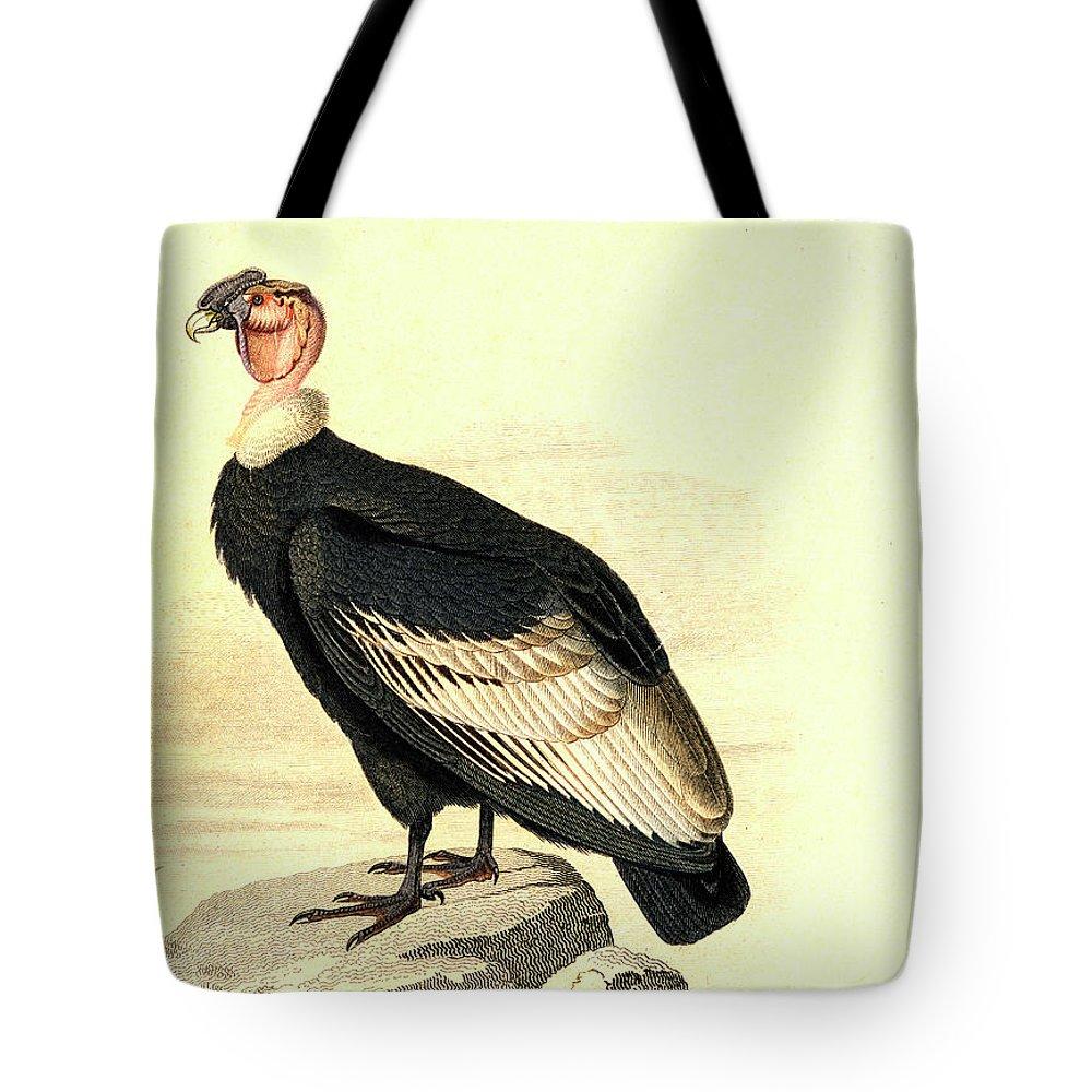 Condor Tote Bags