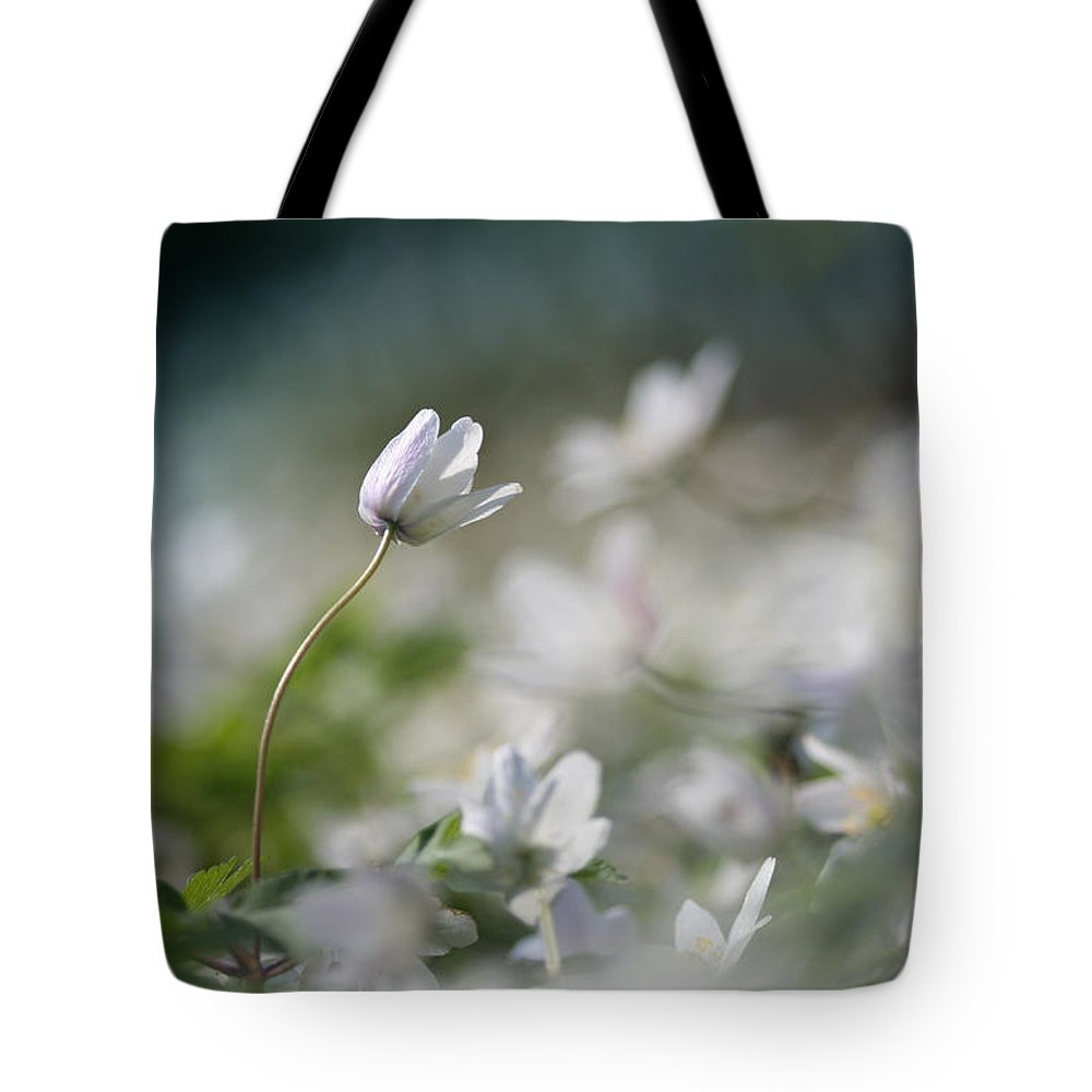 Photo Tote Bag featuring the photograph Anemone Flower by Dreamland Media