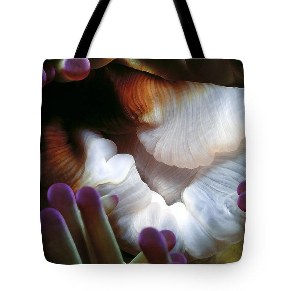 Micronesia Tote Bag featuring the photograph Anenomes 2 by Dawn Eshelman