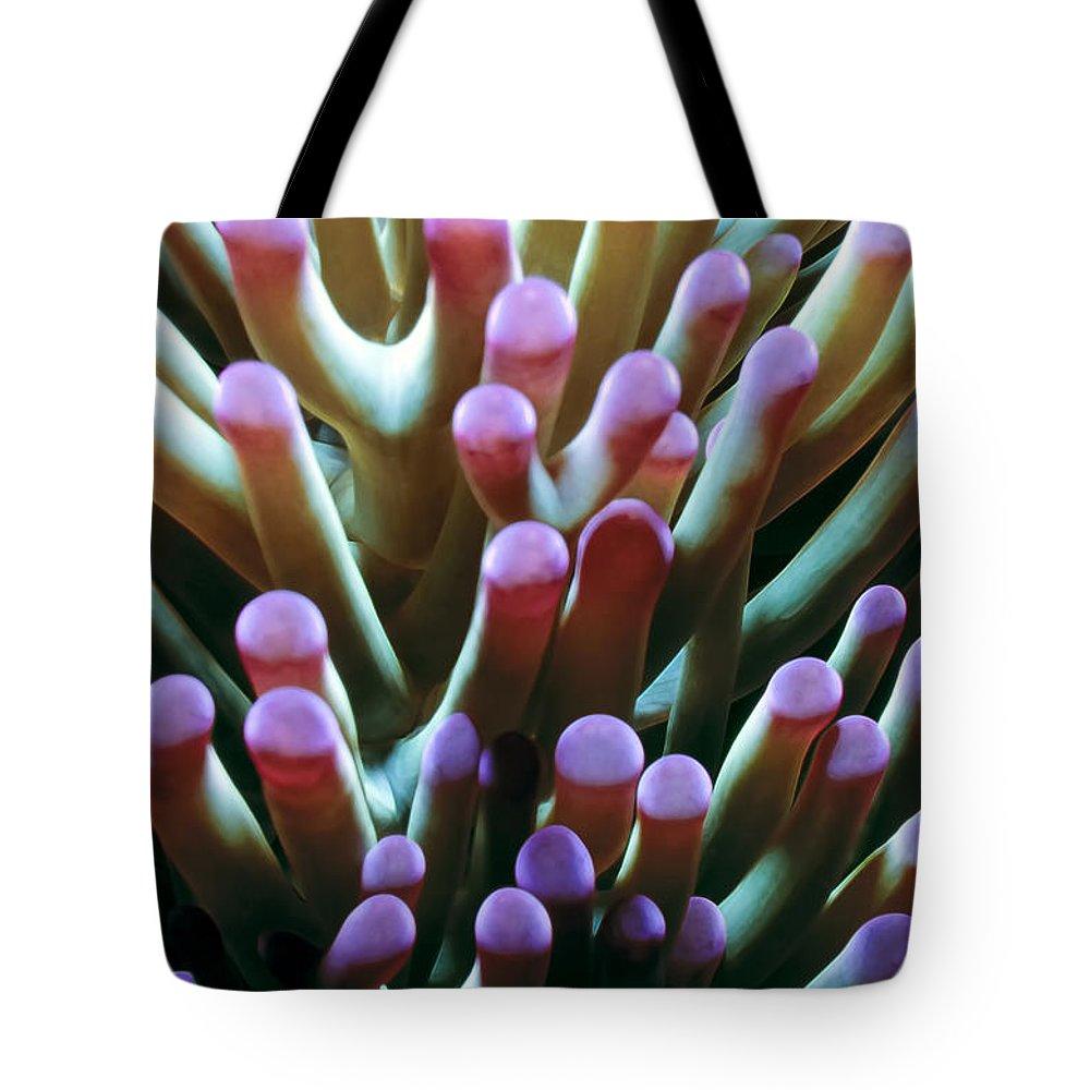 Micronesia Tote Bag featuring the photograph Anenomes 6 by Dawn Eshelman