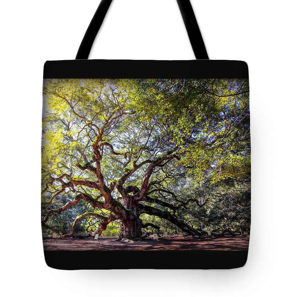 Angel Oak Tree Tote Bag featuring the photograph Angel Of Time by Karen Wiles