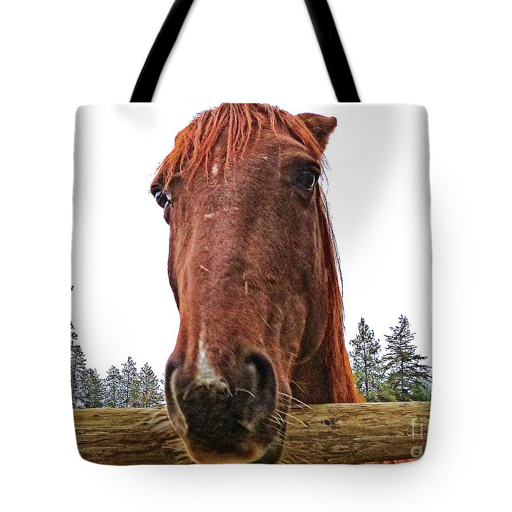 Horse Head Tote Bag featuring the photograph Angry Stallion by Vi Brown