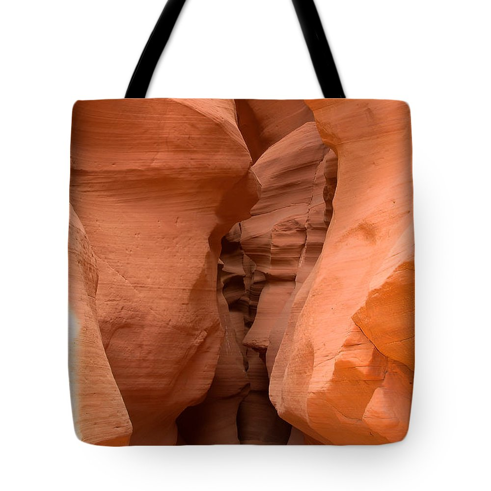 Antelope Canyon Tote Bag featuring the photograph Antelope Canyon 14 by Richard J Cassato