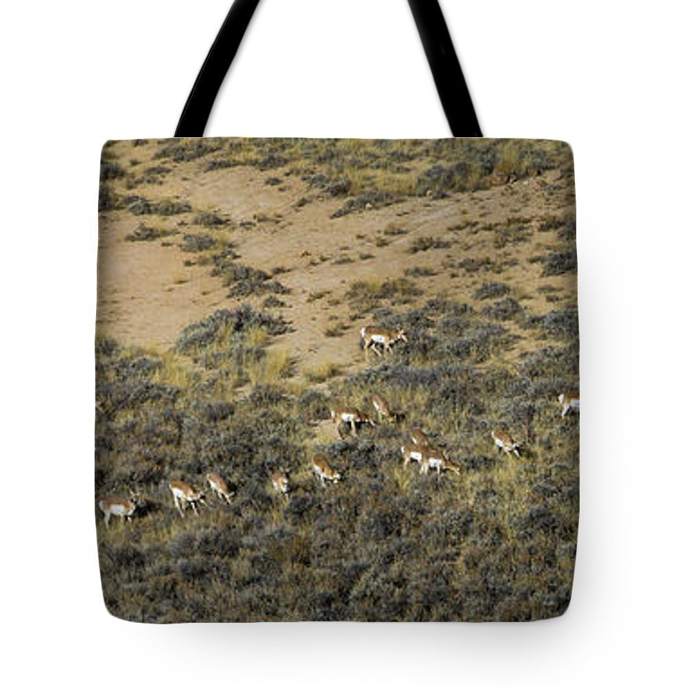 Antelope Tote Bag featuring the photograph Antelope Herd Panorama Signed  20x80 by J L Woody Wooden