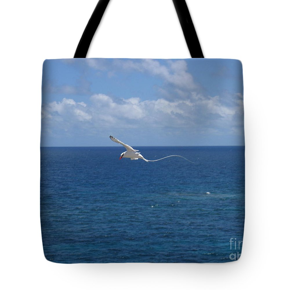 Seabird Tote Bag featuring the photograph Antigua - In Flight by HEVi FineArt