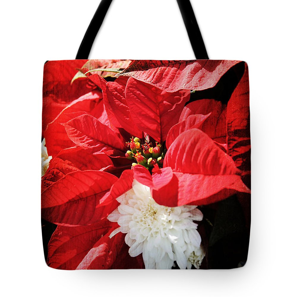 Christmas Tote Bag featuring the photograph Antiqued Poinsettia by Robin Lewis
