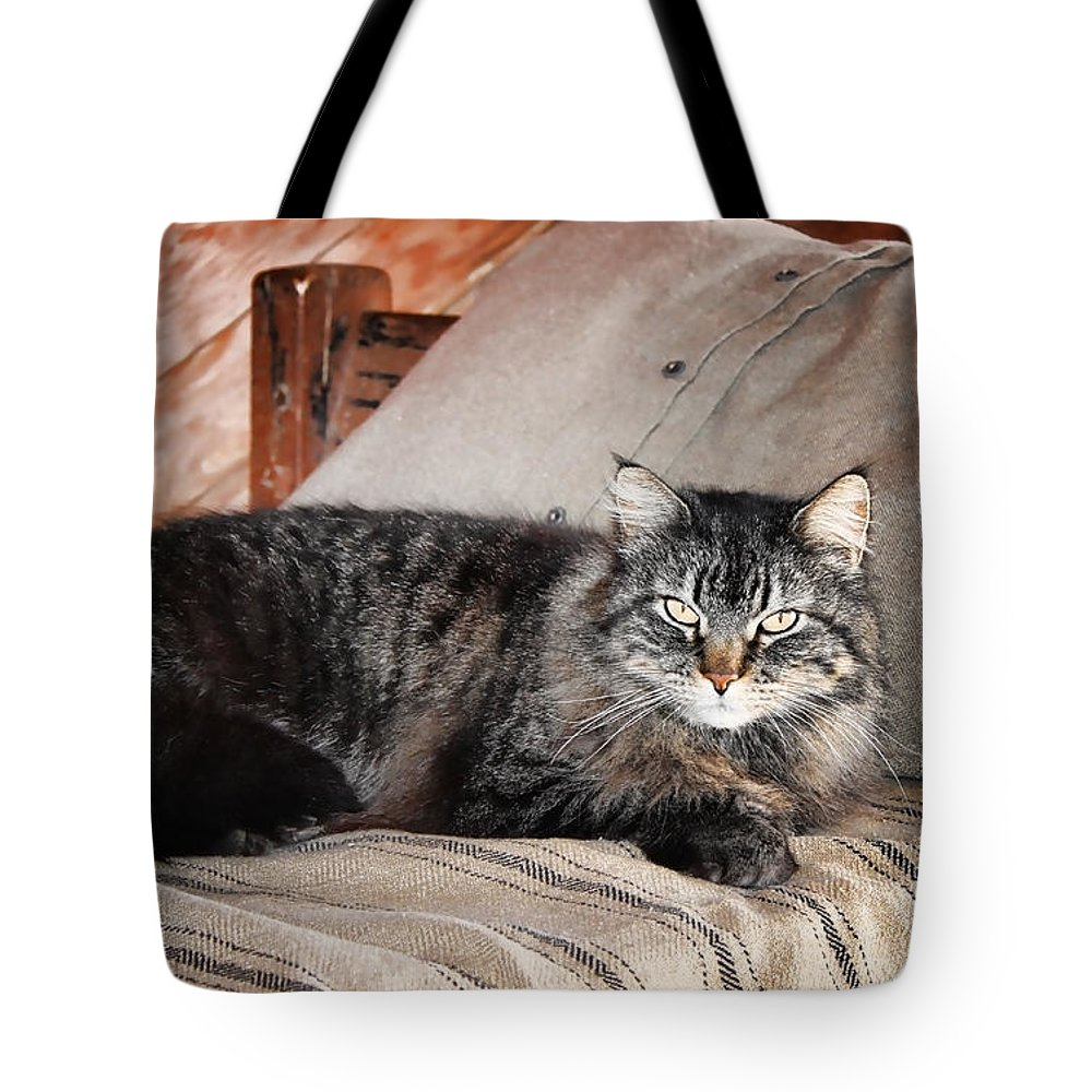 Kitty Tote Bag featuring the photograph Antiquity Kitty by Sylvia Thornton