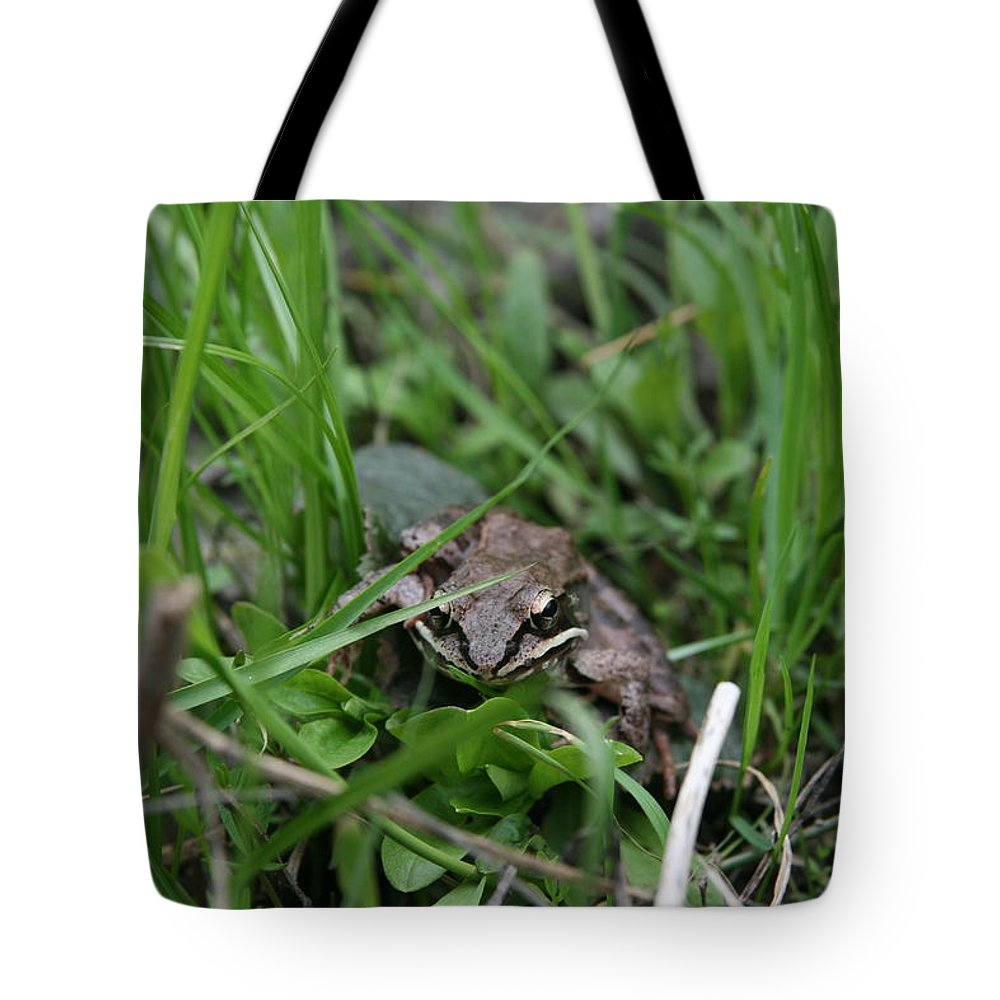 Frog Portrait Tote Bag featuring the photograph Anura by Neal Eslinger