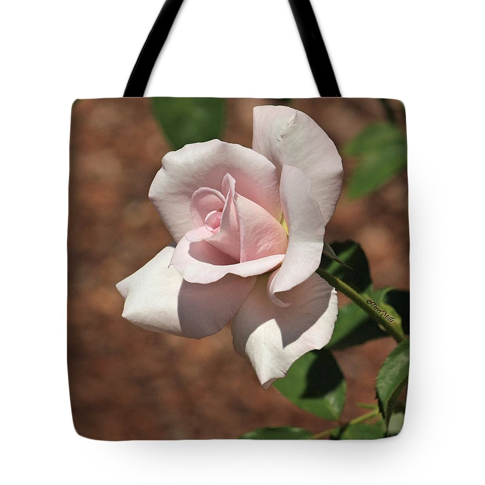 Flower Tote Bag featuring the photograph Apertif Tea Rose by Terri Mills