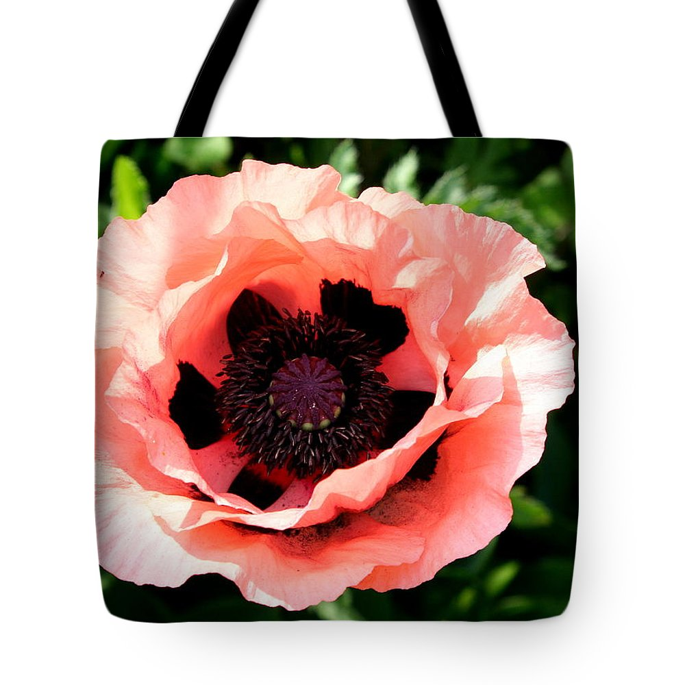 Poppy Tote Bag featuring the photograph Appealing Pink Poppy by Christiane Schulze Art And Photography