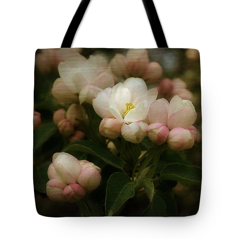 Apple Tote Bag featuring the photograph Apple Blossom Time by Mary Machare