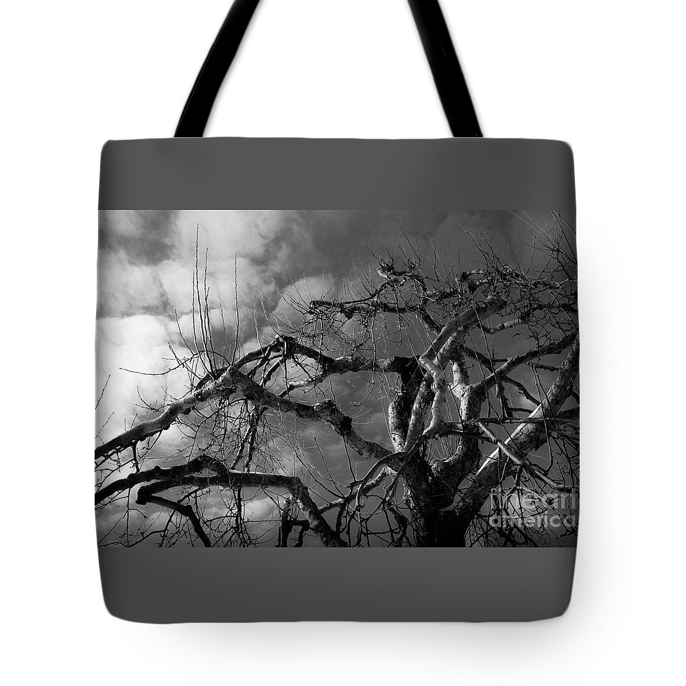 Apple Tote Bag featuring the photograph Apple Tree Bw by Michael Arend
