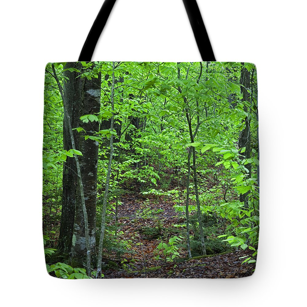 Spring Tote Bag featuring the photograph Approaching Sullivan by John Stephens