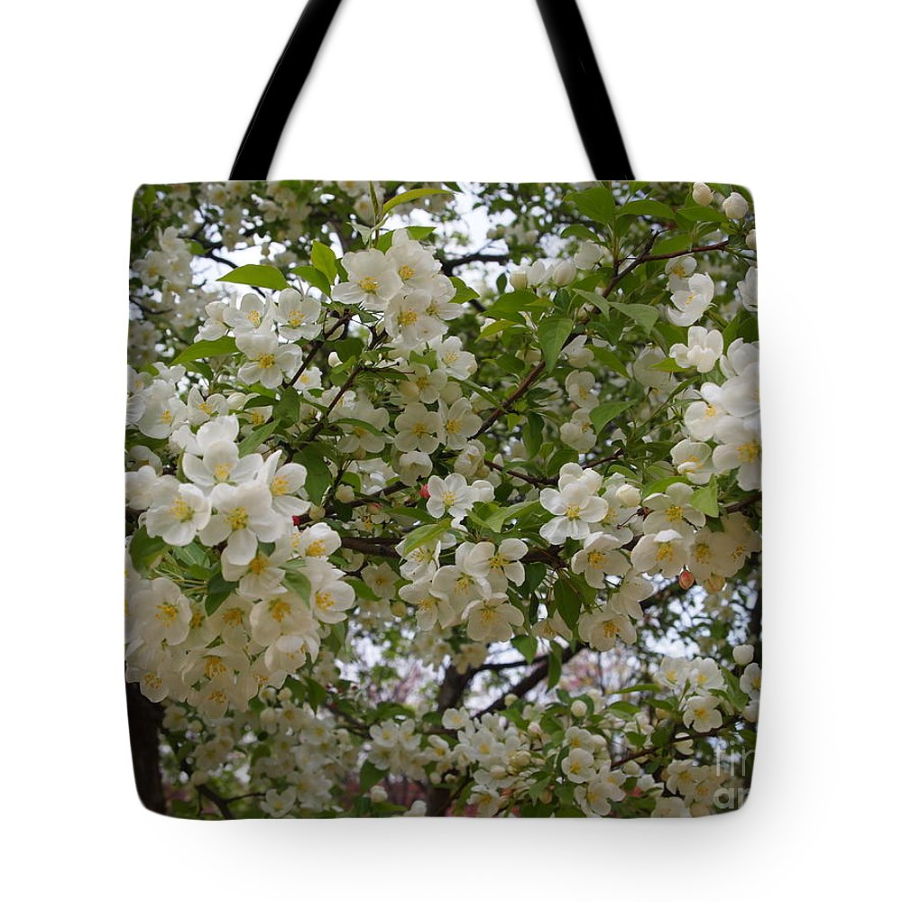 A Flowering Tree So Overpopulated With Blooms It's Hard To Find A Branch. Tote Bag featuring the photograph April's Bouquet by Nancy Kane Chapman