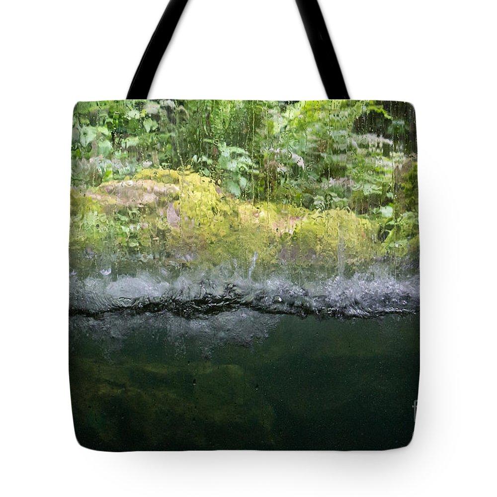 Aquarium Tote Bag featuring the photograph Aquarium by Suzanne Luft
