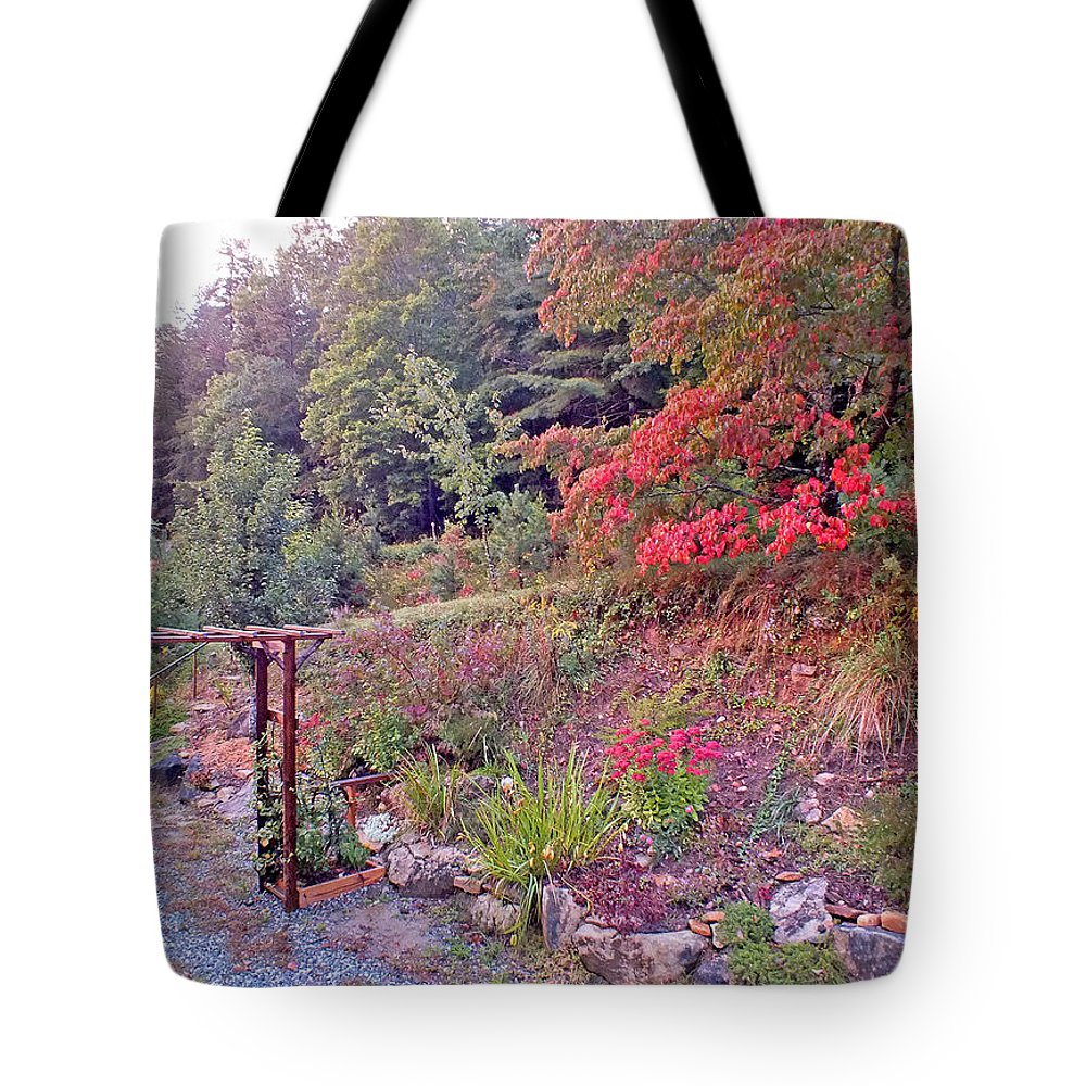 Duane Mccullough Tote Bag featuring the photograph Arbor And Fall Colors by Duane McCullough