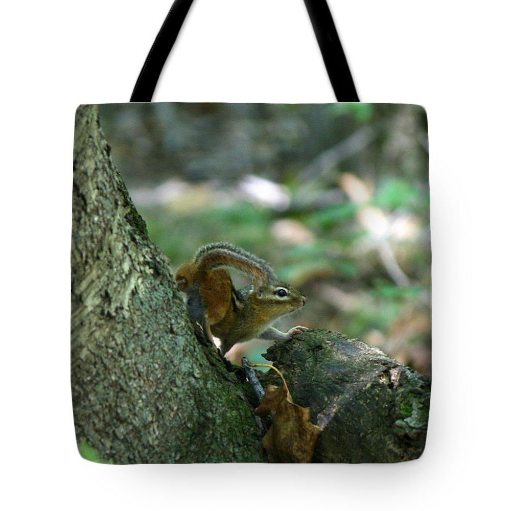 Chipmunk Tote Bag featuring the photograph Arched Chipmunk by Neal Eslinger