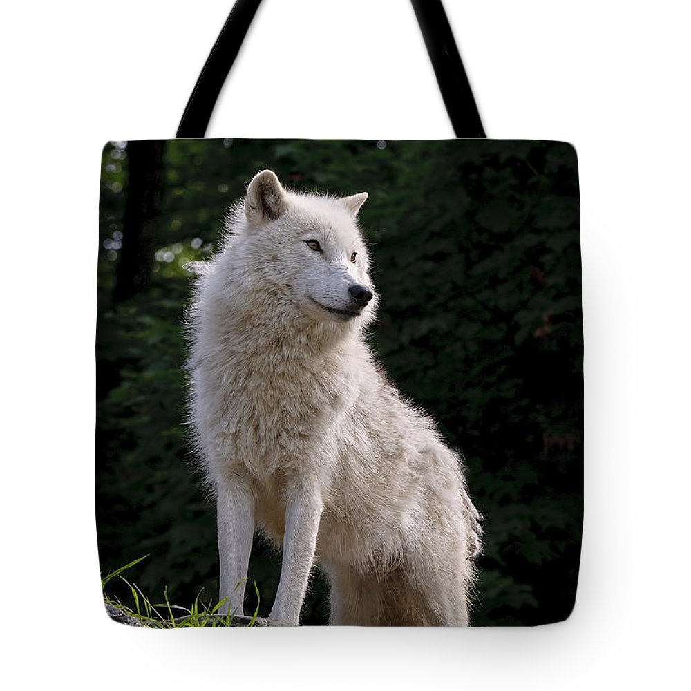 Arctic Wolf Photography Tote Bag featuring the photograph Arctic Wolf On Hill by Wolves Only