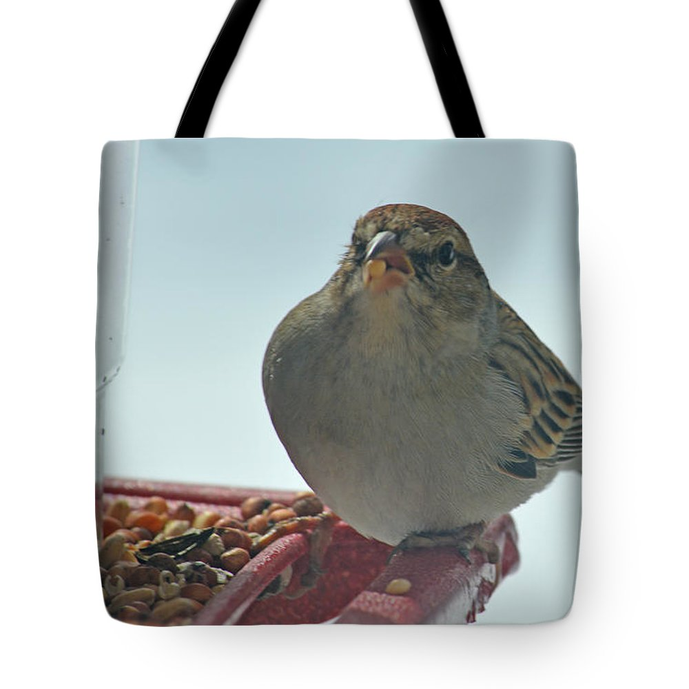 Red Tote Bag featuring the photograph Are You Sure You Want This Seed? by Barb Dalton