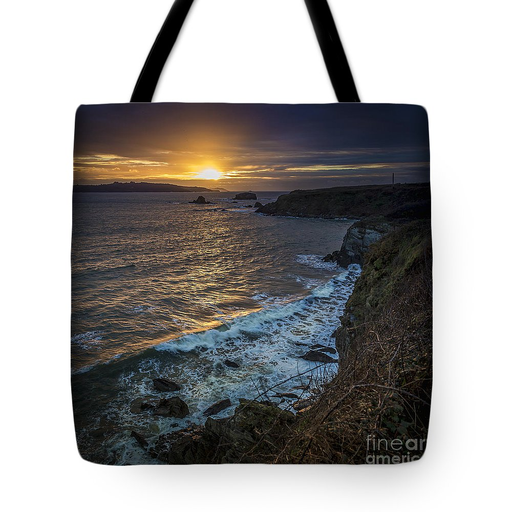 Ares Tote Bag featuring the photograph Ares Estuary Mouth Galicia Spain by Pablo Avanzini