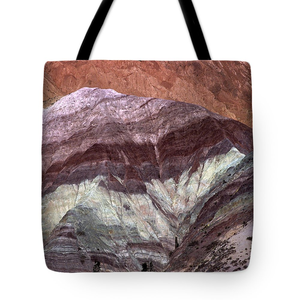 Argentina Tote Bag featuring the photograph Argentine Rock Art by James Brunker