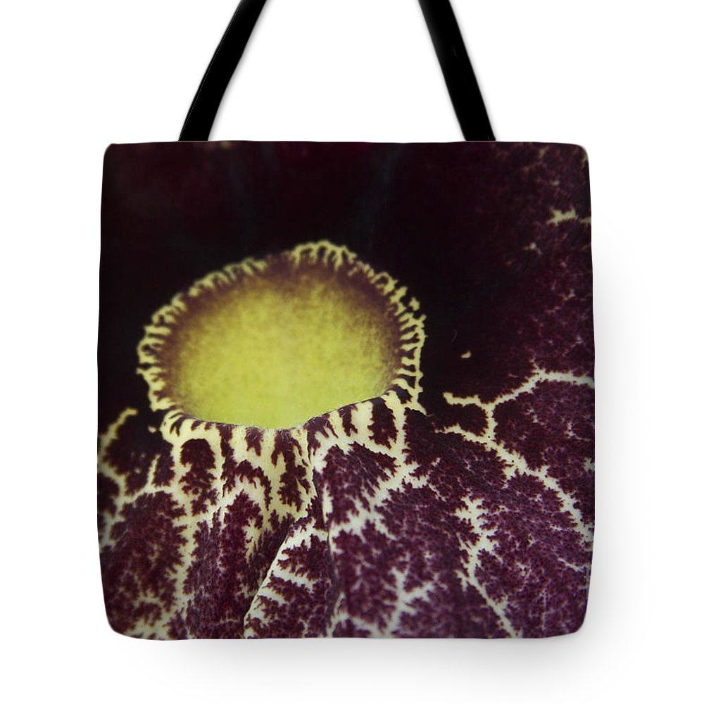 Aloha Tote Bag featuring the photograph Aristolochia - Dutchmans Pipe by Sharon Mau