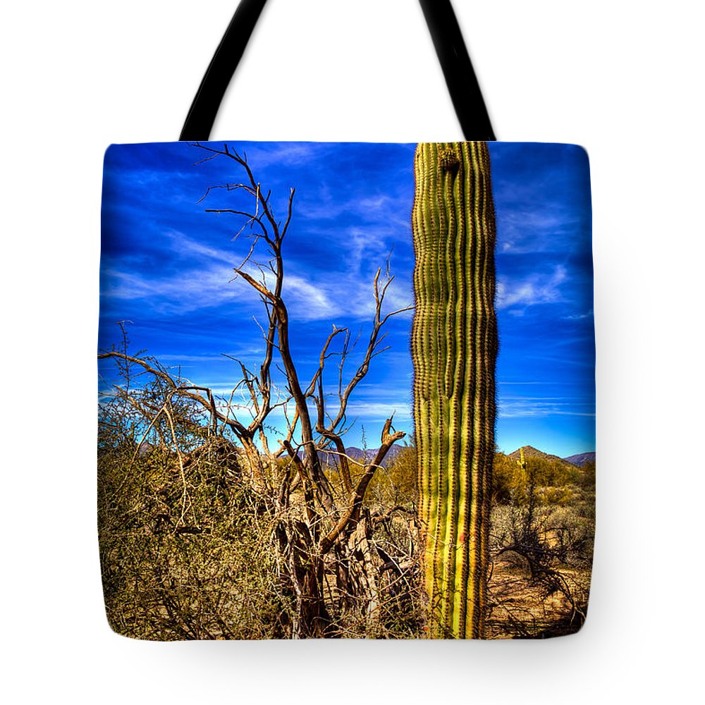 Cactus Tote Bag featuring the photograph Arizona Landscape IIi by David Patterson