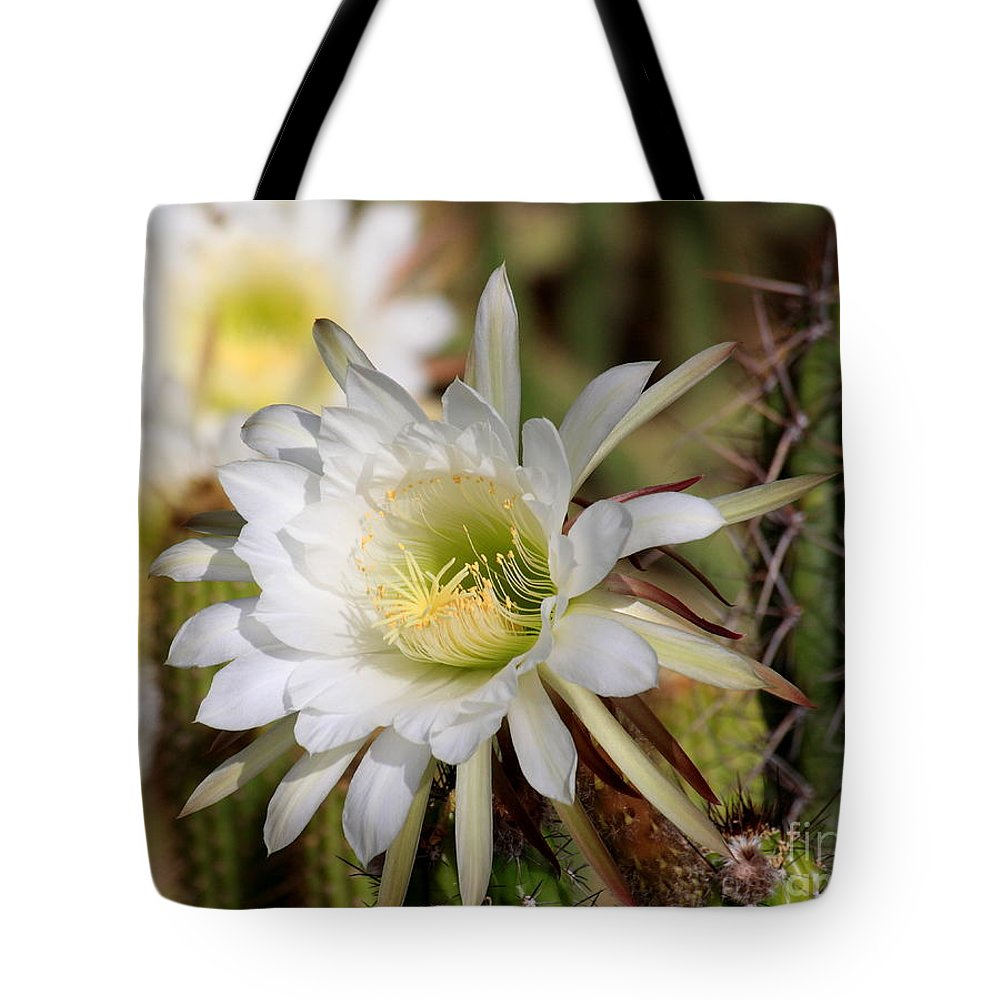 Night Bloomer Tote Bag featuring the photograph Array Of Night Bloomers by Ruth Jolly